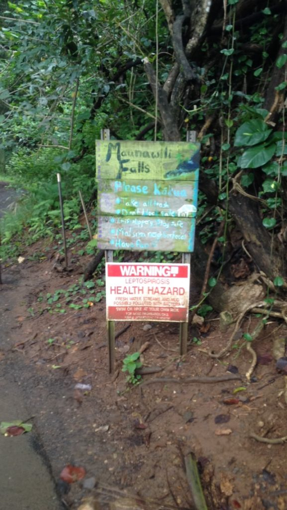 Manuawili Falls Trail Head The Ultimate Guide of Oahu Hawaii, Best Waterfalls on Oahu