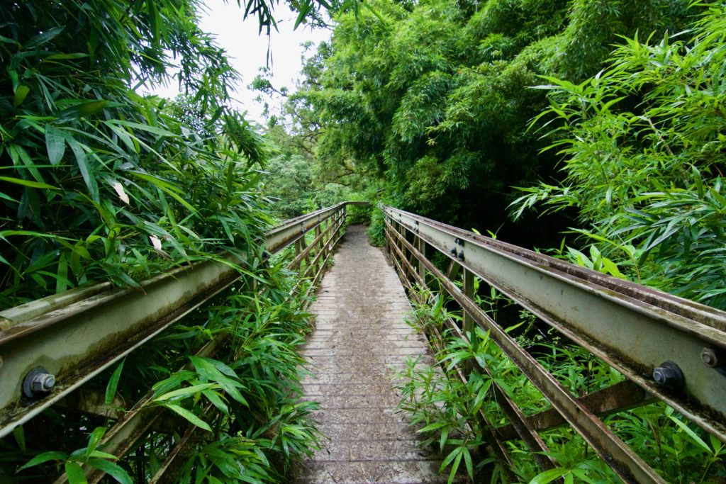 Below this bridge are several waterfalls. Haleakala National Park. What to do in Maui.