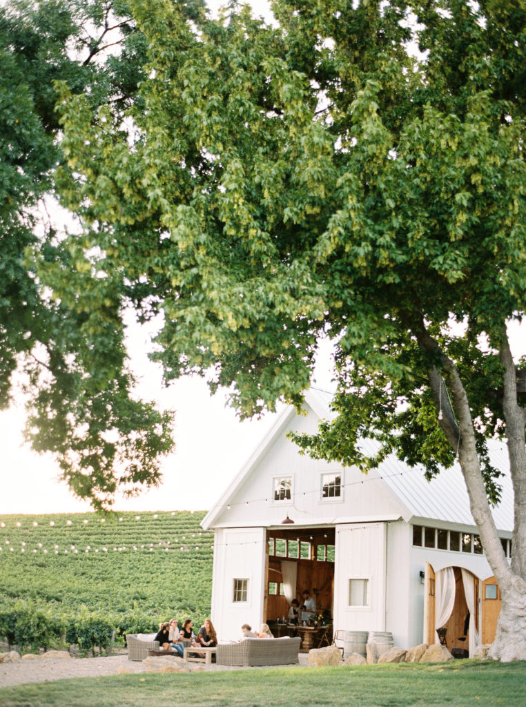 HammerSky Vineyard in Paso Robles, CA.