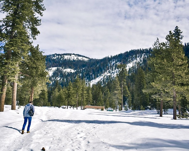 Hiking over Lodgepole Campground - A Winter Visit in Sequoia / Kings Canyon National Park. What to do at Sequoia Kings Canyon National Park in the Winter.
