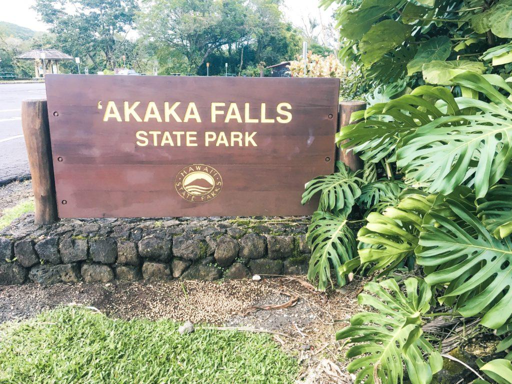 Akaka Falls State Park Big Island of Hawaii