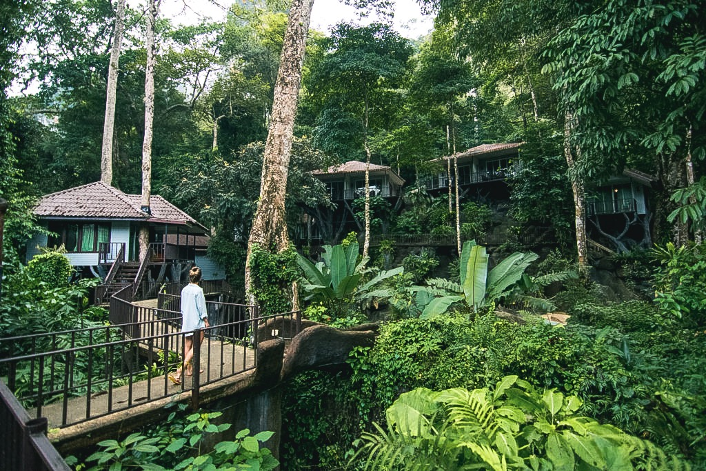 Khao Sok National Park Thailand - Rock and Treehouse Total Resort