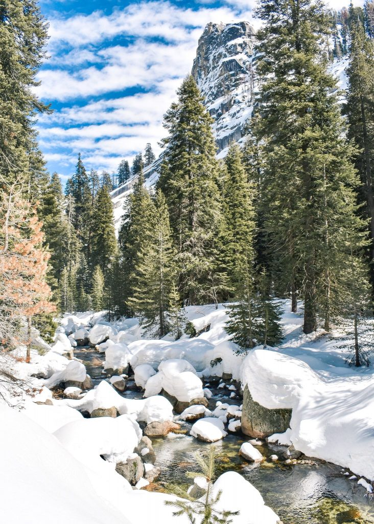 Tokopah Falls Winter Sequoia National Park - What to do and where to stay in Sequoia National Park in the winter.