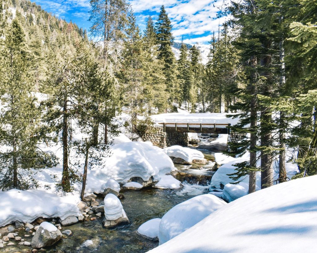 Winter Visit to Sequoia Kings Canyon National Park - What do to in Sequoia Kings Canyon National Park during the winter and where to stay.