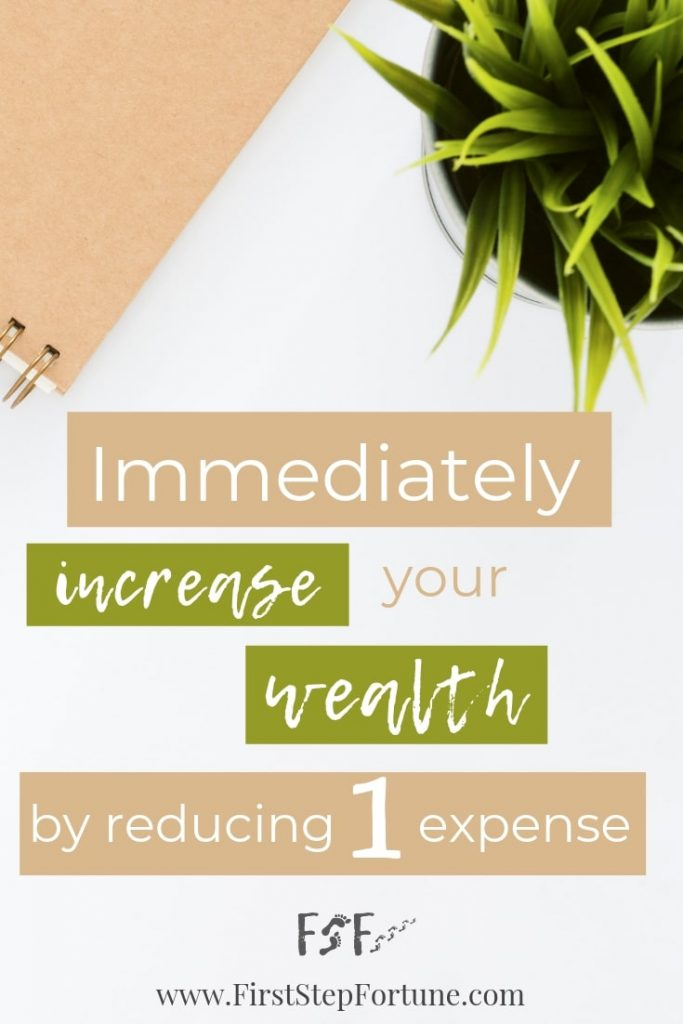 Immediately increase your wealth by reducing your living expenses-min