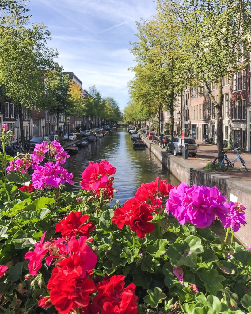 11 Best Things To See And Do in Amsterdam. Amsterdam Canals. What to do in Amsterdam. What to see in Amsterdam. Wander around the Amsterdam Canals.